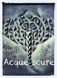Acque scure (tattoo and spirit, 2) - copertina