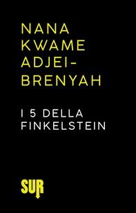 I 5 della Finkelstein - Librerie.coop