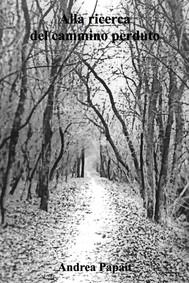 Alla ricerca del cammino perduto - copertina