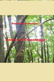 Andrea di Treschegge - copertina