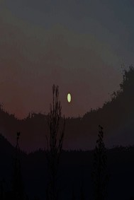 C'è la Luna in cielo - copertina
