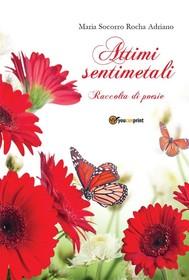 Attimi sentimentali - copertina