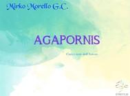 Agapornis - copertina