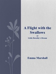 A Flight with the Swallows - copertina
