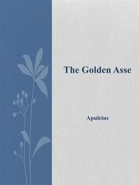 The Golden Asse - Librerie.coop