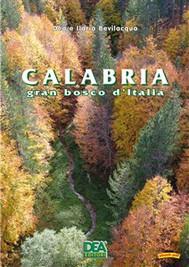 Calabria gran bosco - copertina