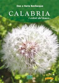 Calabria i colori del bosco  - copertina