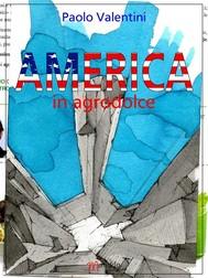 AMERICA in agrodolce - copertina