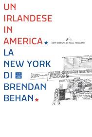Un irlandese in America - copertina