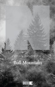 Bull Mountain - copertina