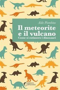 Il meteorite e il vulcano - Librerie.coop