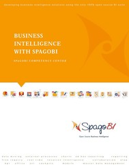 Business Intelligence with SpagoBI - copertina