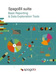 Basic Reporting & Data Exploration Tools - copertina