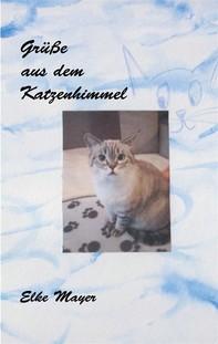 Grüße aus dem Katzenhimmel - Librerie.coop
