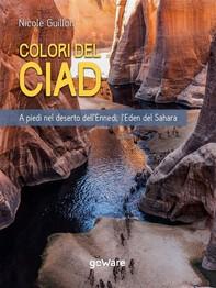 I Colori del Ciad. A piedi nel deserto dell'Ennedi, l'Eden del Sahara - Librerie.coop
