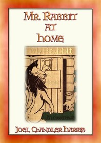 Mr RABBIT AT HOME - 24 Illustrated Children's Stories - Librerie.coop