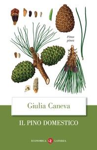 Il pino domestico - Librerie.coop