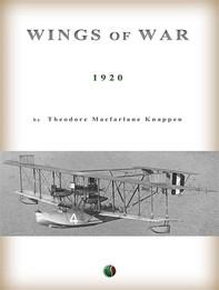 Wings of War - Librerie.coop